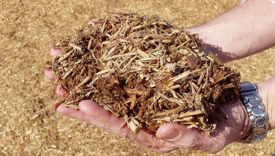 Арахисовые доски и банановый текстиль - стройматериалы из органических отходов