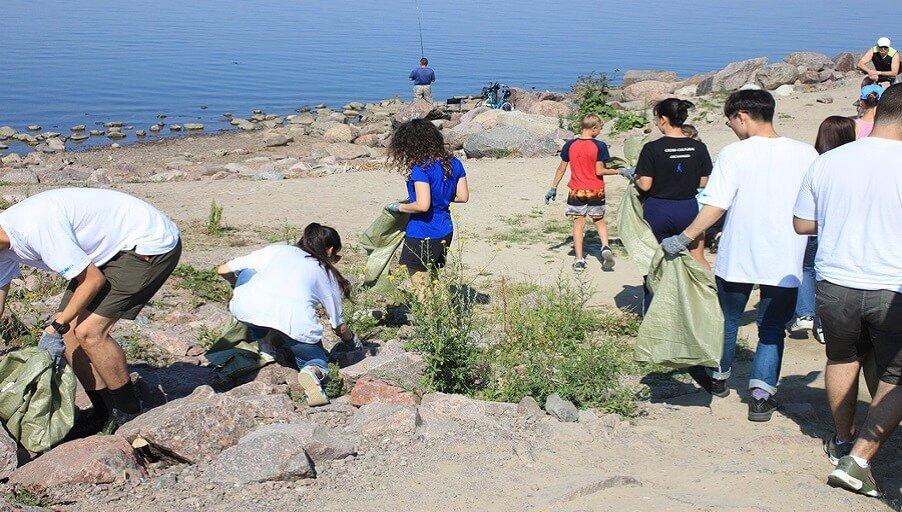 Жители просят регулярной помощи в вывозе мусора на берегу Финского залива