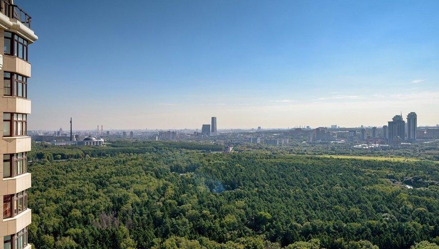 Панорама района