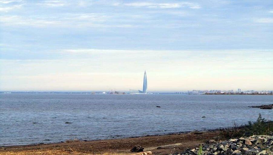 На берегу Финского залива прошла акция «Чистый берег», субботник по раздельному сбору мусора.